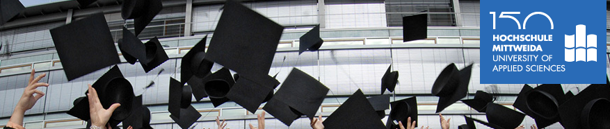 Hochschule Mittweida - Двойной диплом БГЭУ и Высшей школы Миттвайды