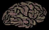 Маркетолог - мозг предприятия