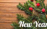 Новый год 2017. Поздравление на сайт