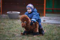 Ждановичский детский дом 11.12.2016