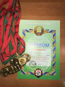 Соревнования по волейболу 2017